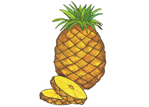 Piping Rock Pineapple Supreme Fragrance Oil